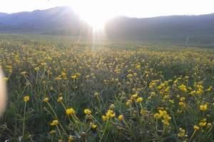 【暑期热销】喀拉峻草原一日游【可升级全景游】