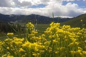 喀拉峻大草原一日游【世界自然遗产地】