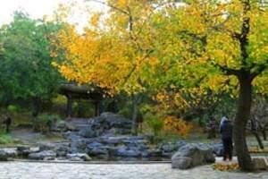 京东石林峡赏红叶 九天飞瀑一日游