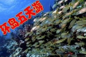 三亚西岛六日游,缤纷三亚6日游,让您每天都能看到不一样的海