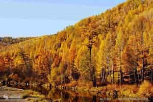 草原、室韦、额尔古纳湿地、莫尔道嘎森林公园、根河3日游