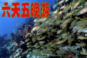 三亚渔家六日游 深入渔村、体验生活 了解海洋、保护海洋