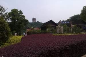 随州西游记公园+温泉奇幻二日游