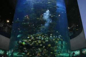 华夏城海底世界优惠门票-含5D动感电影-可景区现付