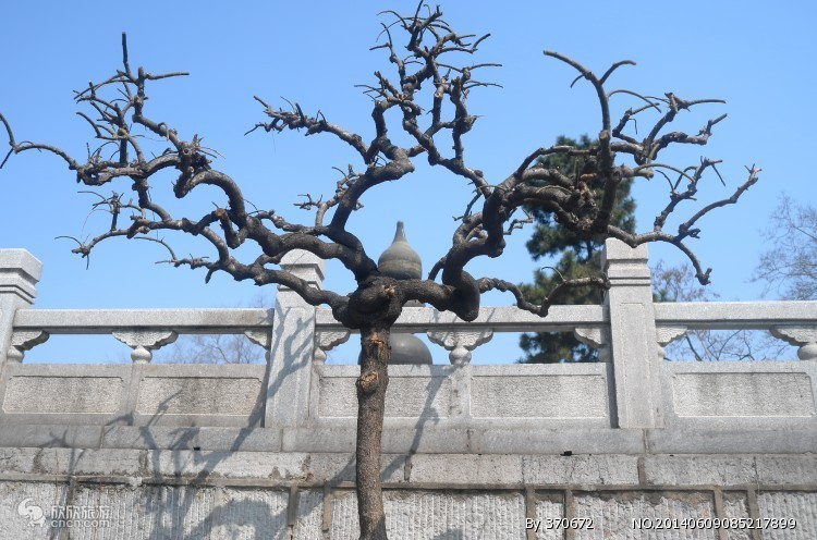 到安徽旅游报价_武汉旅行攻略_武汉一日游报武汉5月旅游攻略图片