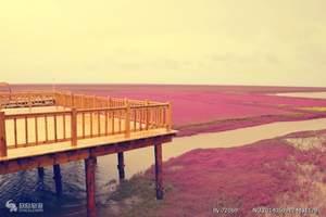 大连周边哪里好玩_大连去盘锦红海滩一日游_红海滩直通车