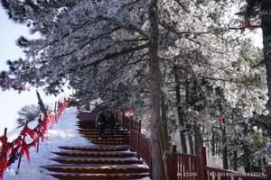 泰安春节放寒假旅游推荐|到古西安兵马俑明城墙秦风唐韵高铁三日