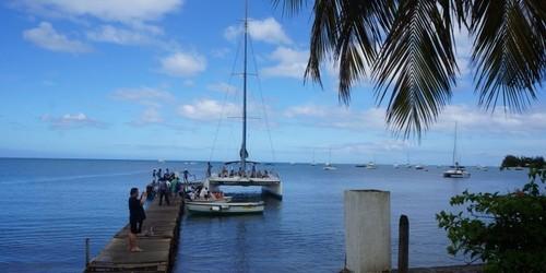 毛里求斯鹿岛