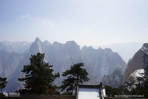 泰安出发到陕西西安、兵马俑、延安、壶口、明城墙双卧六日游