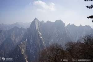 西安峰华山西峰上北峰下往返汽车专线一日游