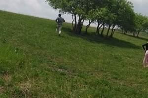 北京去承德避暑山庄、普宁寺/小布达拉宫双汽两日游