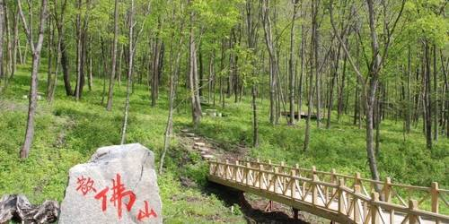 亚布力国家森林公园