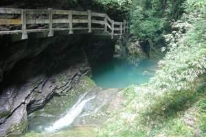 重庆到武隆仙女山森林公园【世界遗产】天坑三桥一日游_重庆必耍