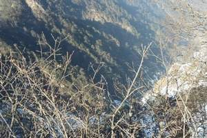 西岭雪山现在还有雪吗 /成都到西岭雪山一日旅游线路