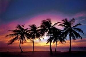 阳光海南度假五日游,住三亚酒店海景房,海南旅游团攻略-报价