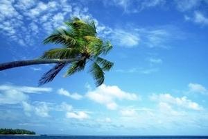 海南休闲五天游,三亚蜈支洲岛自由行+蜜月游