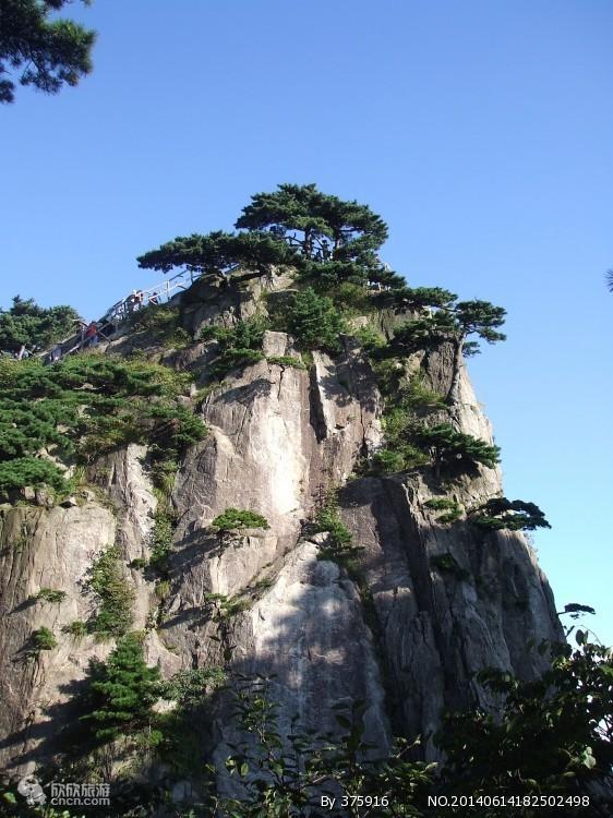 【上海去黄山二日游】黄山旅游纯玩团_山顶观日出、上海接送