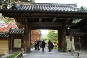 海口到日本7日游,玩转日本旅游团攻略,休闲蜜月日本七天游