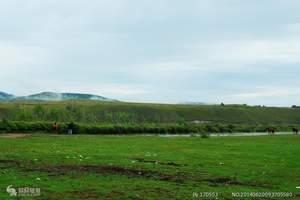 哈尔滨呼伦贝尔草原、室韦、莫尔道嘎、满洲里、漠河北红村9日游