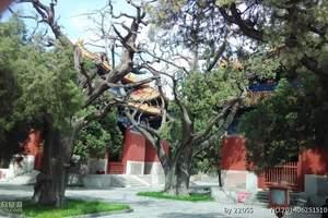 河南濮阳学生团队乘汽车到泰山  曲阜精彩两日游价格