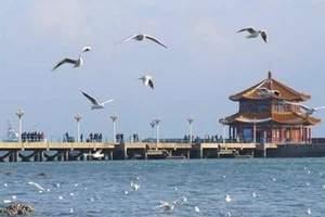 太原暑期夏令营_太原到青岛、日照、连云港海洋文化六日夏令营