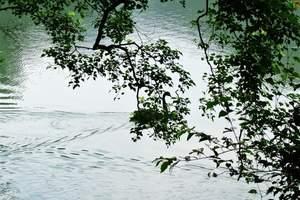 南昌去巴厘岛旅游团 南昌出发到巴厘岛蓝梦岛金巴兰蜜月6日游