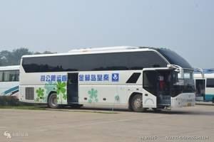 秦皇岛郁金香旅游汽车服务公司_北戴河旅游车出租