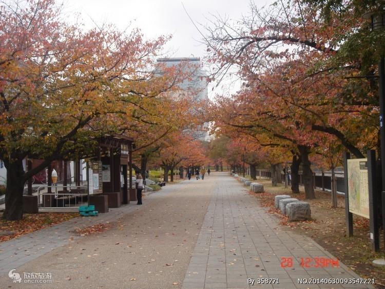 南宁到日本旅游|日本北海道温泉魅力五天