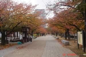 2018年日本6日旅游-南京到日本大阪京都伊豆亲子美食6日游