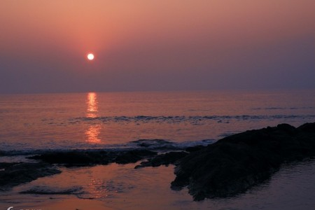 日照大巴海洋公园、刘家湾赶海深度3日游-送保险'济南出发'