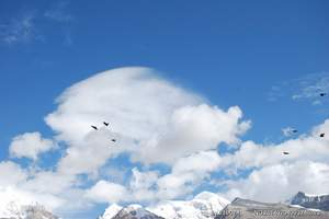 西藏之【拉萨+布达拉宫+纳木错+民俗村+羊卓雍湖】单飞10日