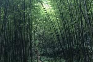 郑州-重渡沟两日游