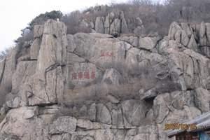 东岳泰山门票预定 泰山景区大门票 泰山成人票