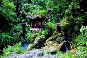 清明想带孩子去四川旅游 黄龙溪 乐山大佛 熊猫乐园双飞6日游