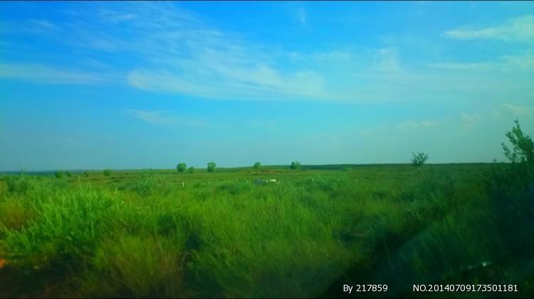 鄂尔多斯草原一日游