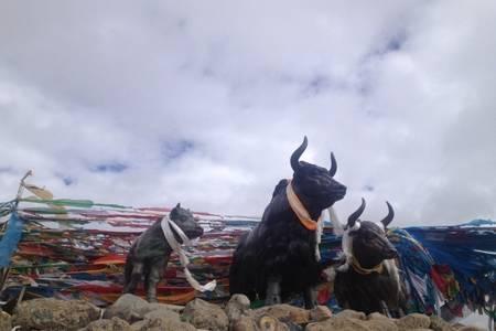 济南到西藏旅游【山东成团青藏-寻梦青藏】无自费双飞双卧10天