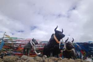 济南到西藏旅游【山东成团青藏-寻梦青藏】无自费双飞双卧9天