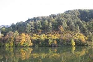 北京周邊植樹推薦+綠色環保植樹二日游,公司團建拓展旅游,植樹