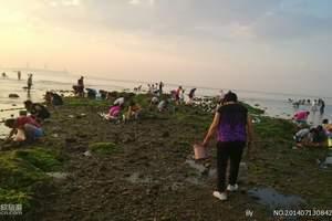 桐洲岛极限挑战—小小冒险王一日活动