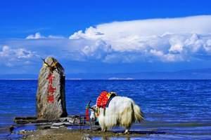 【清明兰州周边哪里好玩】塔尔寺、互助彩虹部落、青海湖2日品质