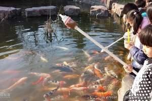 【常州淹城野生动物园1日游】含马戏_扬州到常州旅游_天天发班