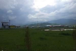 甘南夏河拉卜楞寺、桑科草原一日游