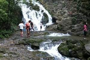 重庆到赤水汽车 赤水大瀑布、四洞沟二日游,赤水好玩吗哪些景点