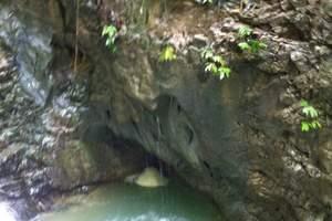 重庆出发到万盛黑山谷一日游【天然的氧吧,神奇的峡谷】