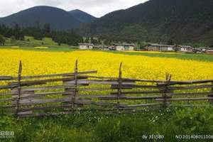 西藏拉萨、那曲纳木措、林芝 双卧十一日游
