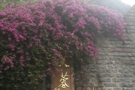 济南到灵秀湖北--武当山、神农架、昭君故里、三峡大坝双飞6日