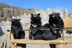 东方熊牧场优待票(提前一天预定)