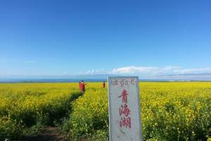 青海湖、茶卡盐湖、祁连三日游