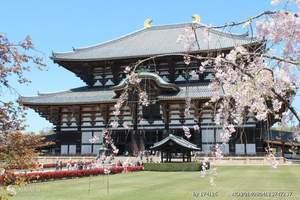 青岛到大阪自由行五日游 日本自由行 日本签证材料日本代购跟团