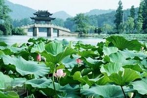 寻爱江南——华东五市双飞6日游